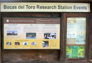 The notice board at the front entrance of the research station.