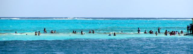 Swimmers and snorkelers along the spit.