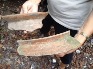 Rim fragments from large jars.