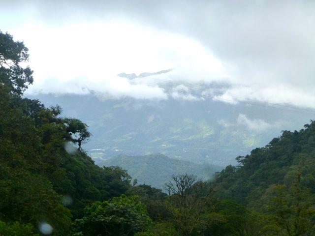 Cloud forest view towards Vulcan Baru, the tallest mountain in Panama.
